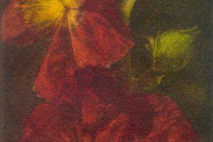 AMAGANTE. Grabado (Mezzotinta 22 x 10 cm). 2000