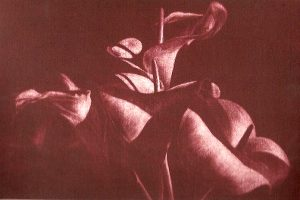 CALAS. Grabado (Aguatinta Bruñida, 16 x 24,5 cm). 2000