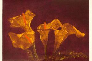 CALAS II. Grabado (Mezzotinta 25 x 34 cm). 2000