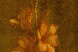 VASONIA. Grabado (Mezzotinta 24 x 14 cm). 2000
